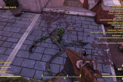 Fallout76-25.10.2020-18_32_16